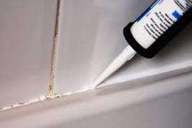 Shower & Sink Sealant White